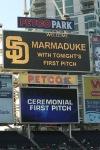 Marmaduke Padres Game (15)