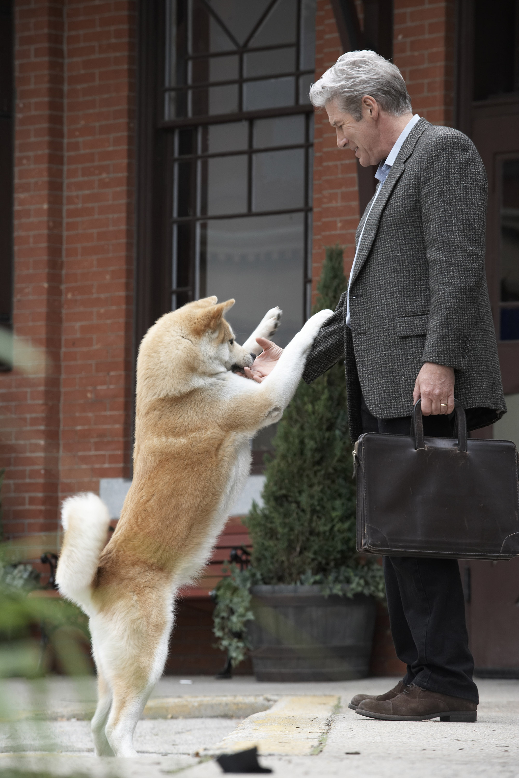 Hachi A Dog's Tale Comes to the Hallmark Channel 9/26/10 ...